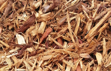 Nautral Woodchips